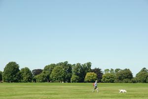 Westbury Park